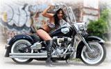 Girl on Harley-Davidson, Bikes & Girls