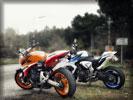 """2012 Honda """"Hornet"""" CB600F & CB1000R"""