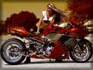 "Custom Suzuki ""Hayabusa"" GSX1300R, Tuning, Bikes & Girls"