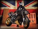 2013 Triumph Speed Triple Bulldog by Vliner