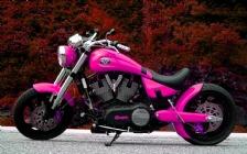 Victory Boss 302, Pink