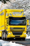 DAF CF, Yellow, Winter