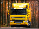 DAF CF, Yellow, Autumn