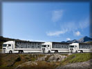 MAN TGX Trucks, White
