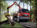 MAN TGS Truck, Red, Forest