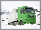 MAN TGA 18480, Green, Snow